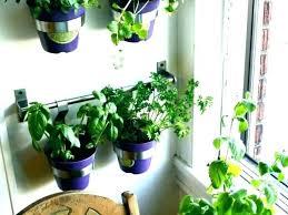 medium size of large plastic outdoor garden pots bunnings gold coast hanging herb planter wall planters