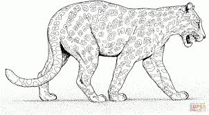 Leopard Drawing For Kids And Baby Leopard Coloring Page Ktwohhkgif