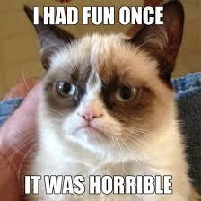 Serious Cat Archives - CAT PICS OMG via Relatably.com