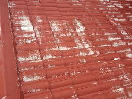 don t paint tile roofs