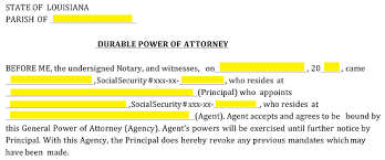 Durable Power Of Attorney Form Simple Free Louisiana Power Of Attorney Forms Word PDF EForms Free