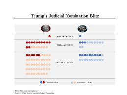 Judges Chart Msnbcs Morning Joe Charts Trump Is Rapidly Transforming