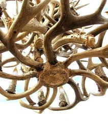 how to make a whitetail deer antler chandelier fresh faux deer antler chandelier how to make
