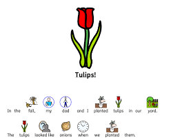 Dual Sport Roll Chart Tulip Chart Symbols Stock Trading Apps In India