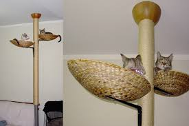 easy diy cat tree build cat climbing tower plans a80