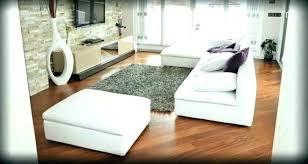 rug on carpet area