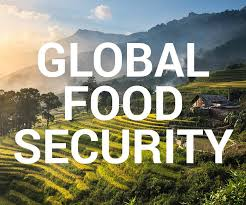 4th International Conference On Global Food Security