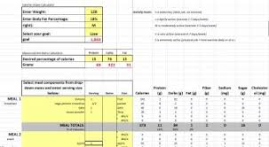diet excel sheet free diet planner nutrition and diet for women