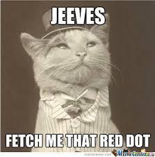 Fancy Cat by shadowgun - Meme Center via Relatably.com