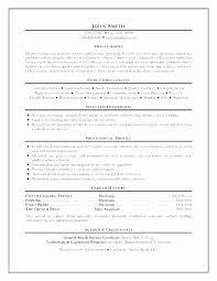 Sample Travel Agent Resume Interesting 44 Best Of Image Of Travel Agent Resume Sample Resume Example Free