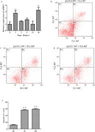 Molecular Cloning And Functional Characterization Of Myc