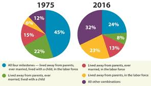 Census Pie Chart Chart Young Adult Milestones 1975 Vs 2016 Johnston