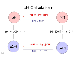 How To Calculate Ph In Chemistry Albert Io