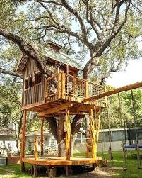 outdoor cat tree house outdoor outdoor ideas outdoor diy outdoor cat tree house