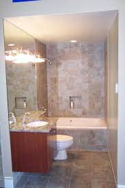 Enchanting Small Bathroom Designs With Shower And Tub Ideas Best