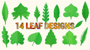 Designs Made From Leaves Diy Paper Leaves 14 Different Leaf Cutting Design Ideas