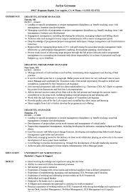 Deloitte Manager Resume Samples Velvet Jobs