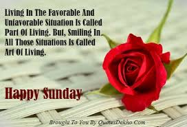 Sunday Inspirational Quotes Impressive Happy Sunday Motivational Quotes Awesome Happy Sunday Inspirational