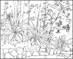 Coloring Pages Of Nature Letter Z Coloring Pages Nature Alphabet