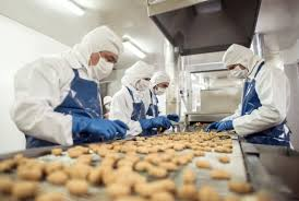 food safety management advanced apo ipro group of people working at a food factory doing quality control on the production line