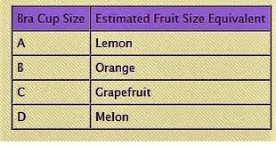 Fruit Comparison Chart Fruit Chart Cup Sizes For Dummies Album On Imgur