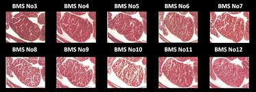 Wagyu Beef Grading And Marble Scores Guide Steaks And Game