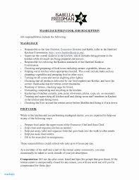 Sample Resume Format Back Office Executive Valid Free Printable