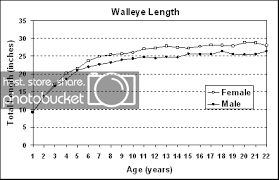 Quinte Walleye Weight Length Vs Age