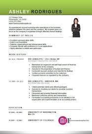 Accounting Executive Sample Resume 12 Account Template Free