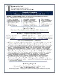 Best Resume Examples Professional Best Of Professional It Resume Inspirational Best Resume Sample For It
