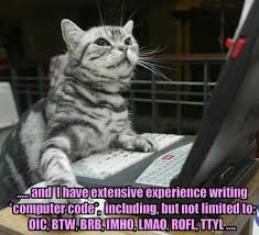 college essay writing help to use humor or to you know not  think long and hard about how funny you are are you funnier than this cat