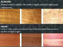 types of hardwood for furniture. Different Types Of Hardwood Timber For Furniture Pine  Yellowish Wood Type .