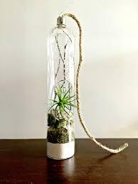 Large Air Plant Terrarium Glass Vase Light Bulb Style Living