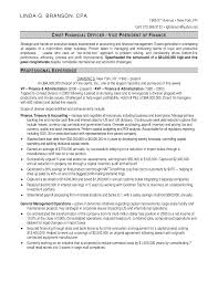 chief financial officer resumes free chief finance officer resume sample templates at