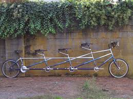 custom rodriguez tandem with cow paint