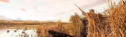 Shadow Grass <b>Blades</b> | Mossy Oak