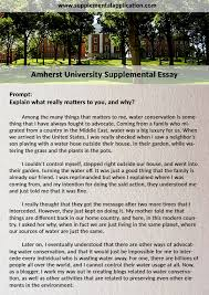 professional help amherst supplement essay supplemental  amherst university supplemental essay