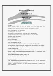 How Tote Resume Summary Statement Examples Skills For Great Brief