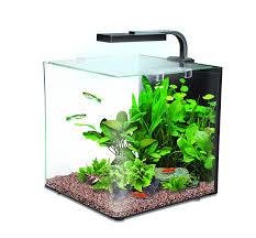 Fish Tank Interpet Nano Led Complete Aquarium Fish Tank Kit 12 L Amazon