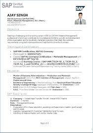 Sap Basis Fresher Resume Format Resume Layout Com