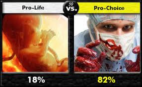 pro life vs pro choice essays