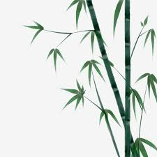 watercolor bamboo bamboo forest green bamboo leaves landscape chinese style traditional chinese painting