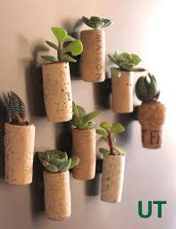 use wine corks as mini succulent planters