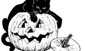 Halloween Verkleedtips Artikel Femma