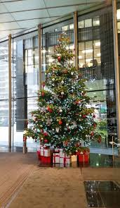 christmas decorations ideas for office. Impressive Office Ideas Christmasplant Forcecouk Christmas Decorations For