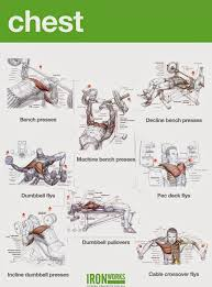 Chest Chart Gym Bodybuilding Chest Exercises Chart Hd Images Gym Work Out