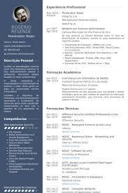 Penetration Tester Resume samples