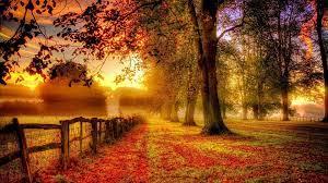 Best Autumn Wallpapers - Top Free Best ...