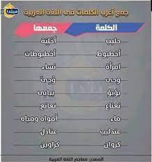طارق الديب (@DCFbEc7PoxK6Txy)