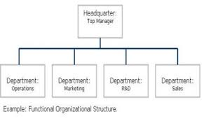 What Is Organizational Structure Of Management Types Examples